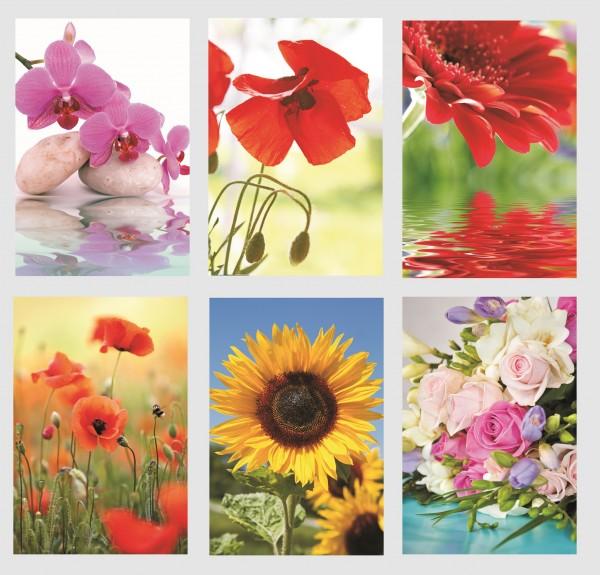 Glückwunschkarten Grußkarten Karten banko Blumen 11,5x17 cm