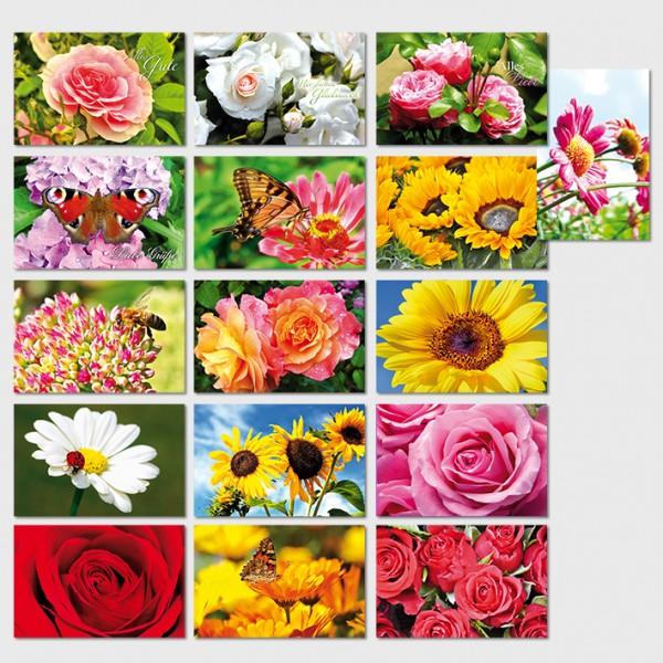 Glückwunschkarten Grußkarten Motiv nach Jahreszeit Karten 11,5x17,5 cm